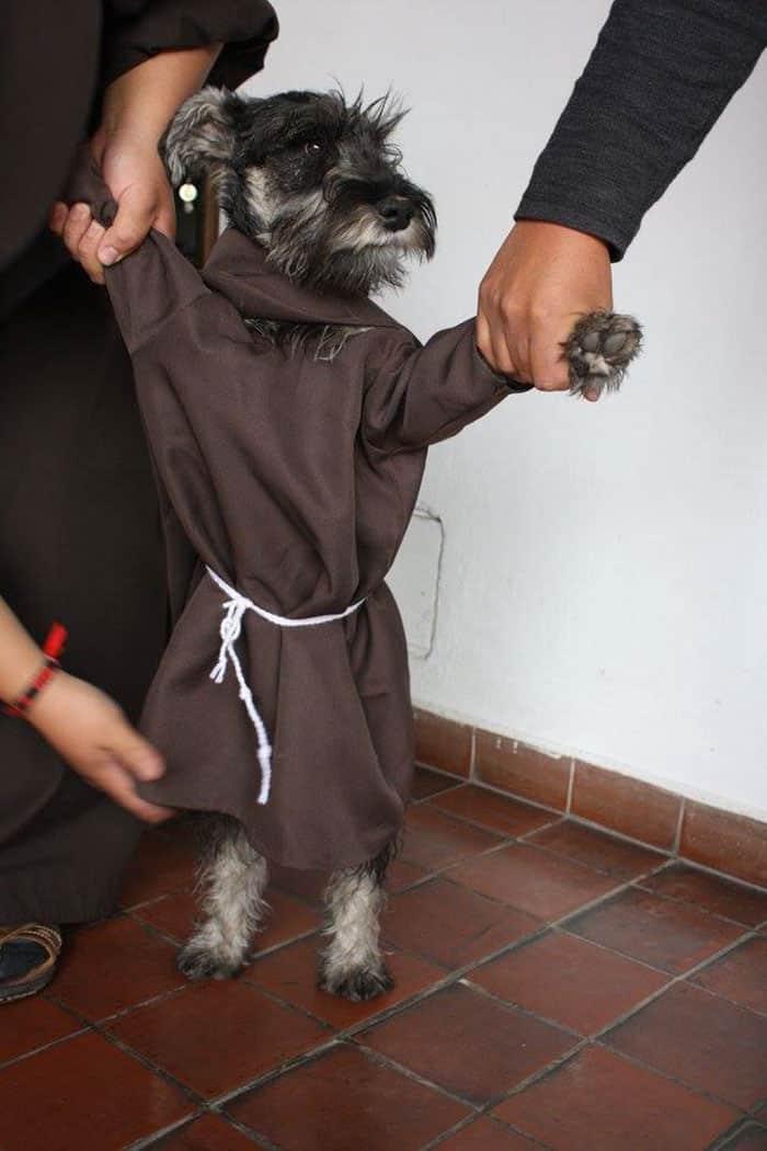 Одежда как у всех монахов