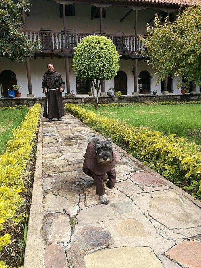 Монахи приютили бездомную собаку