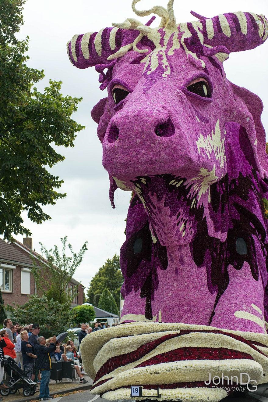 Цветочный парад в Голландии