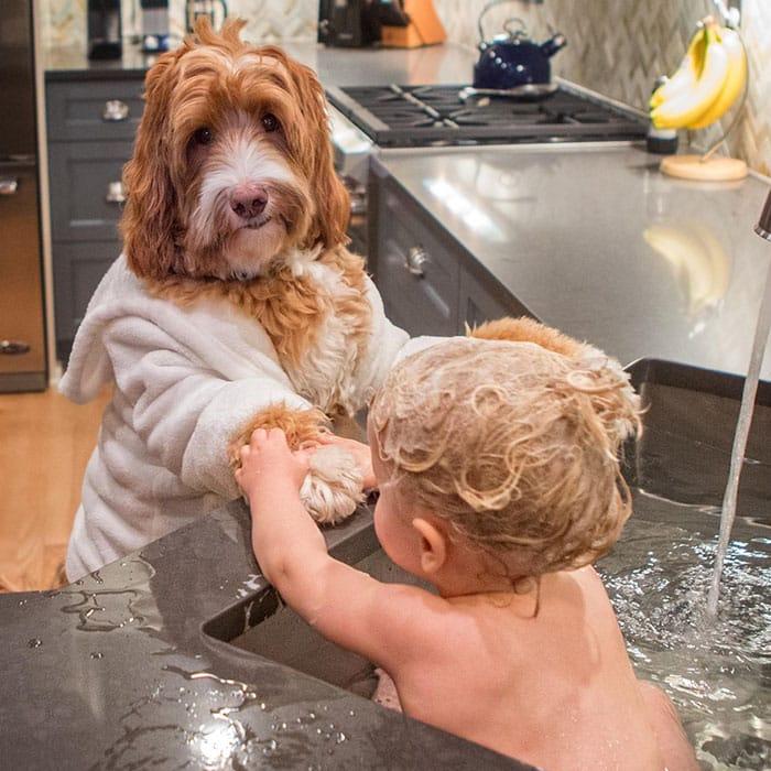 Собака помогает купать ребенка