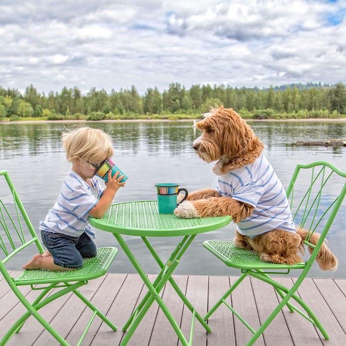 Общий завтрак на берегу реки