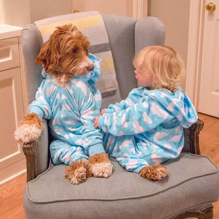 Ребенок разговаривает с собакой перед сном
