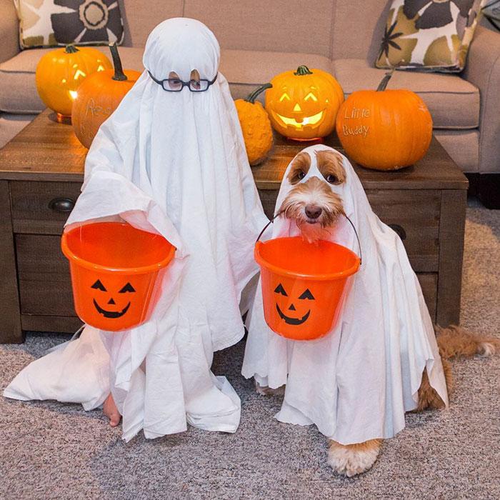 Друзья встречают Хэллоуин