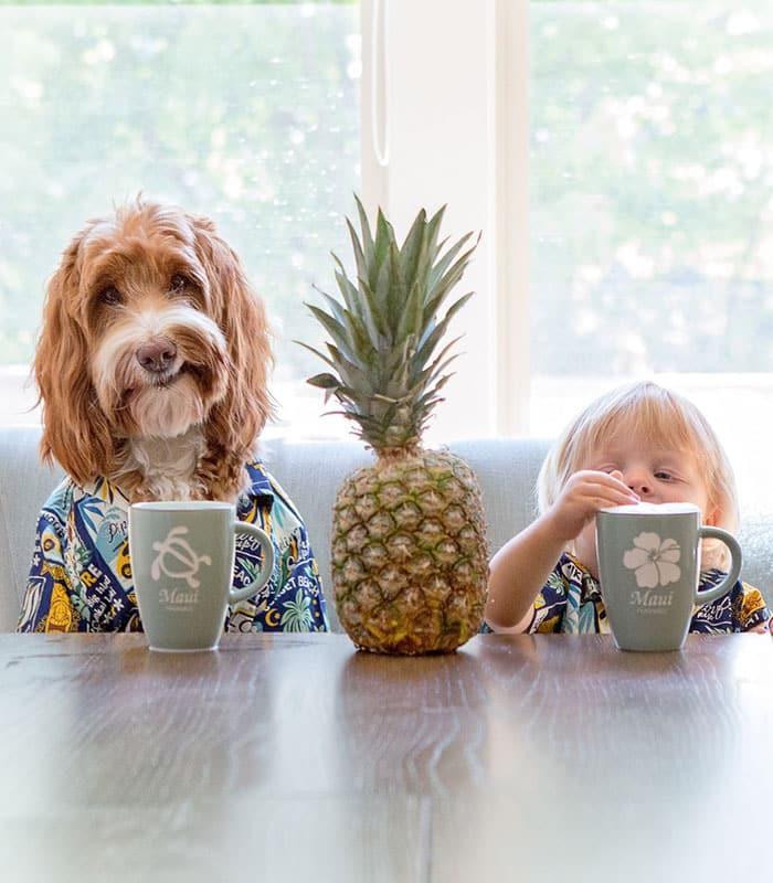 Завтрак за столом с другом