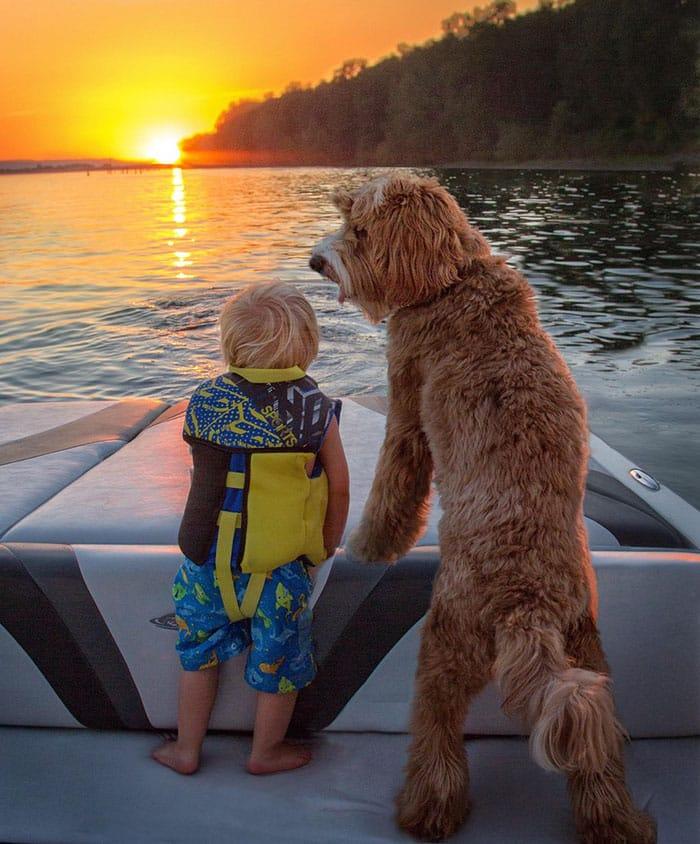Собака следит за мальчиком во время катания на катере
