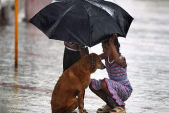 Добрые дети спасают мир