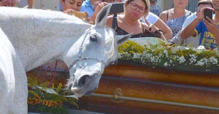 Лошадь на похоронах ковбоя