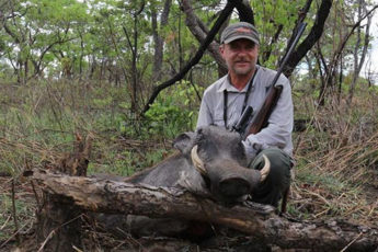 Ветеринар убил животное