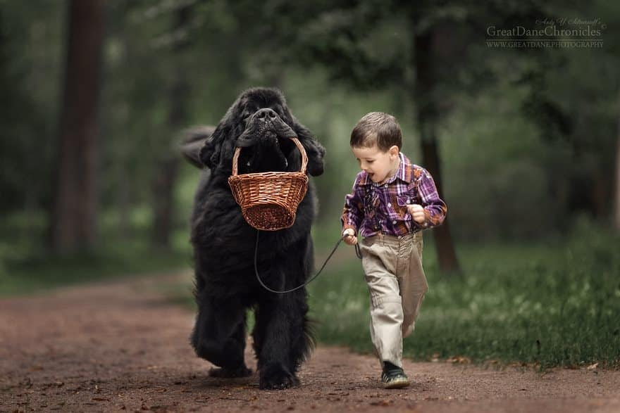 Мальчик возвращается с собакой после сбора грибов