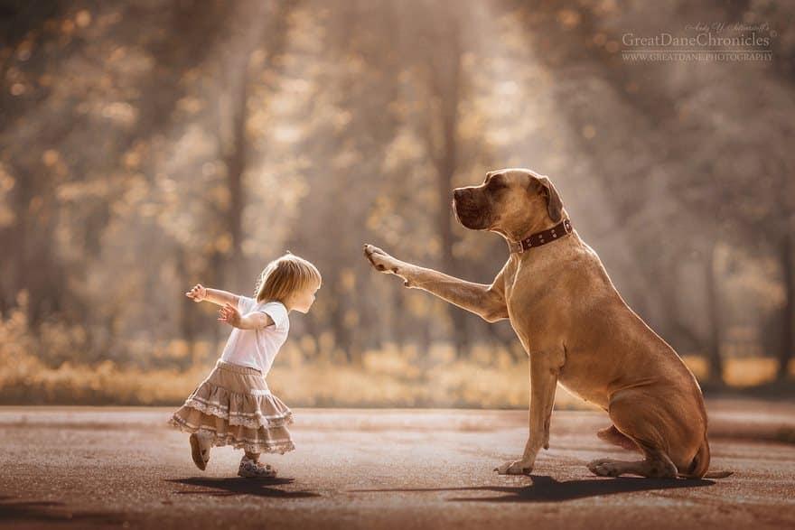 Дог и маленькая девочка