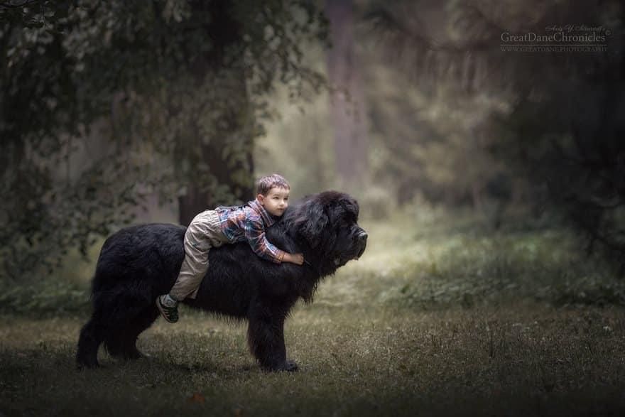 Когда нет коня выручит собака