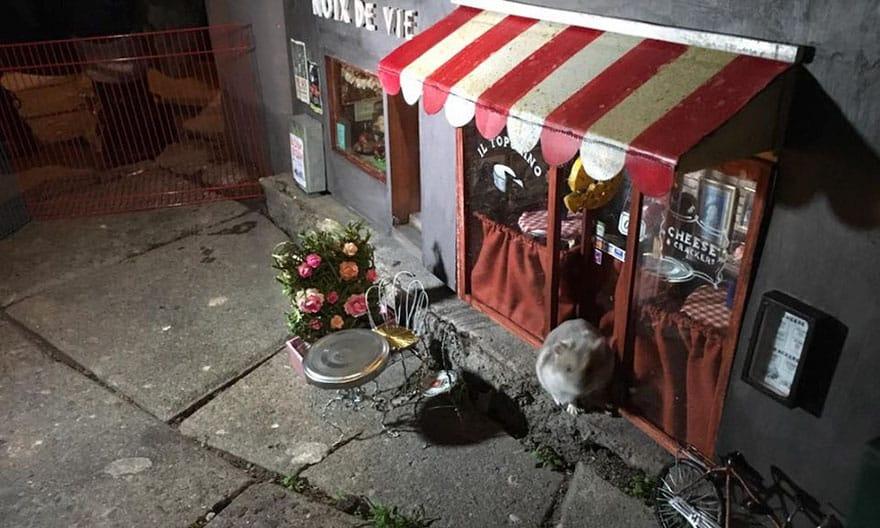 Витрина миниатюрного магазина