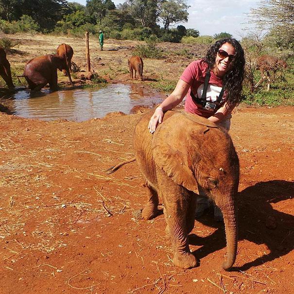 Спасенный слоненок