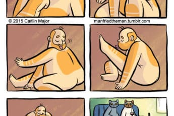 Комикс люди и кошки