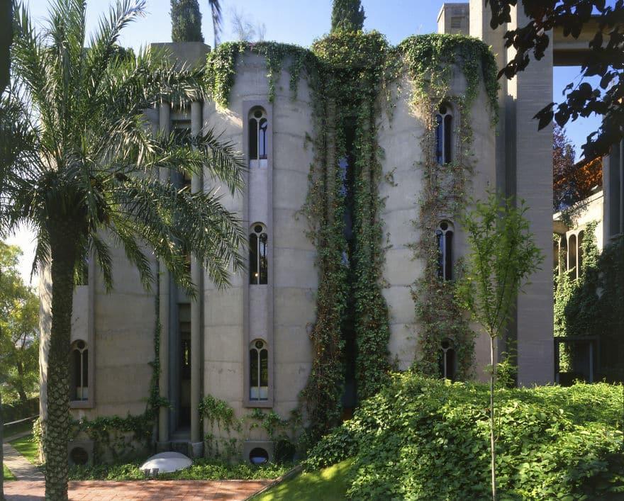 Растения на фасаде