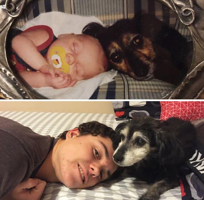 Детство с собакой