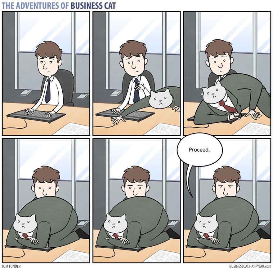 Комикс кот в бизнесе 11
