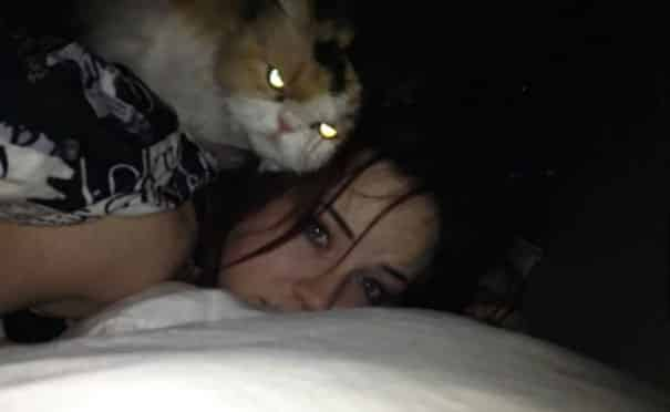 Кот с девушкой