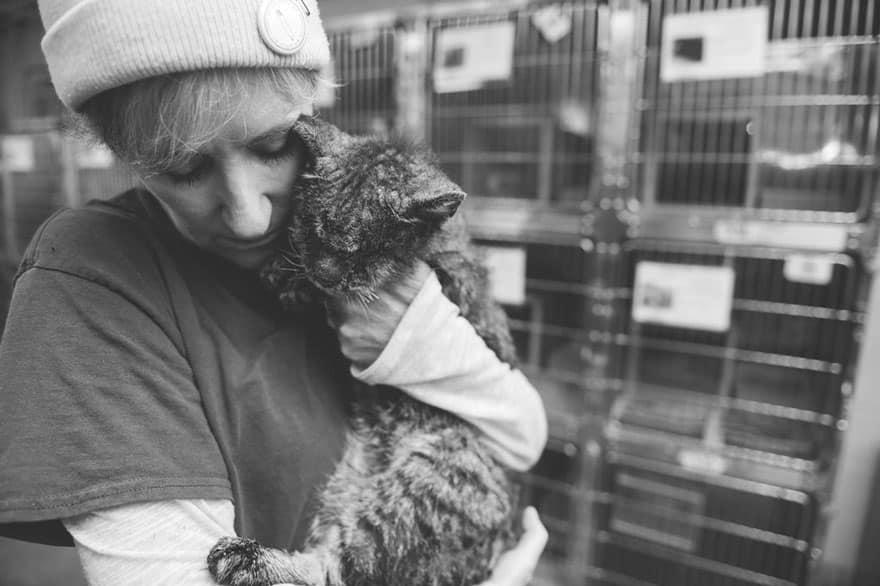 Больная кошка на руках новой хозяйки