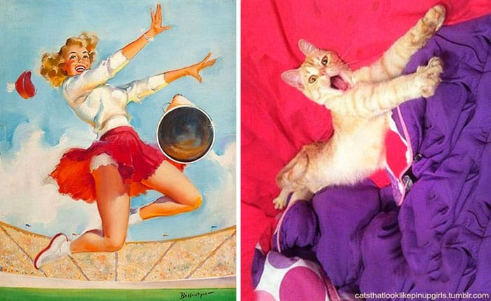 Горячая кошка