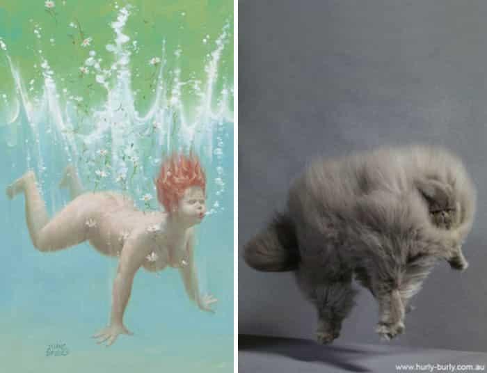 Кошка водолаз