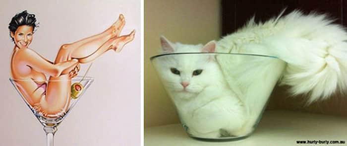 Оригинальная кошка