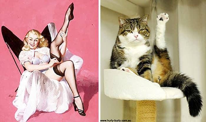 Кошка как девушка