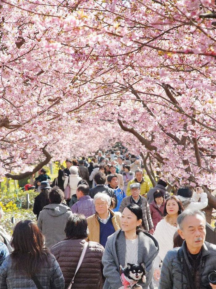 Люди на празднике весны