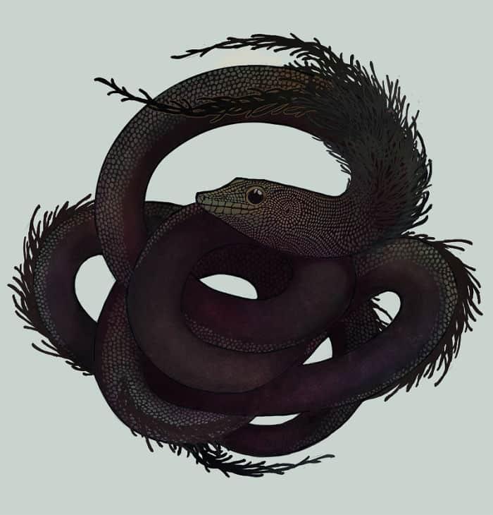 Дух чайной церемонии мудрость дракона