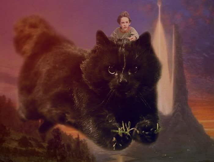 Черная кошка - фэнтези