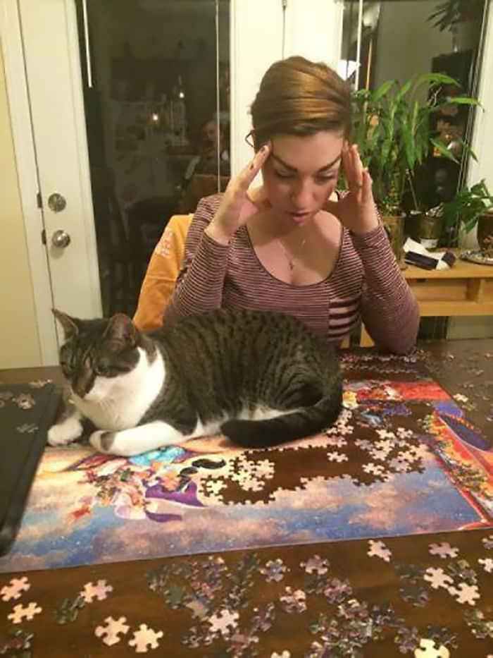 Кошка и пазлы