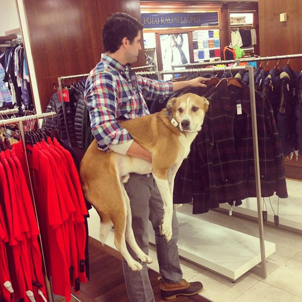 Мужская пародия на поход в магазин