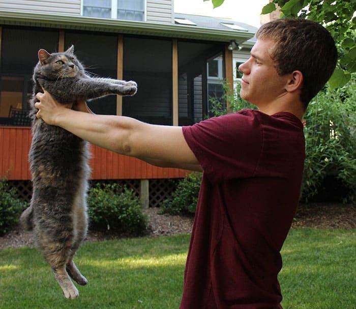 Спасительница кошка