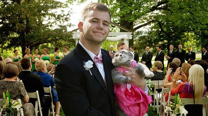 Кошка - лучшая подруга