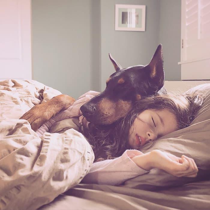 Собака охраняет ребенка