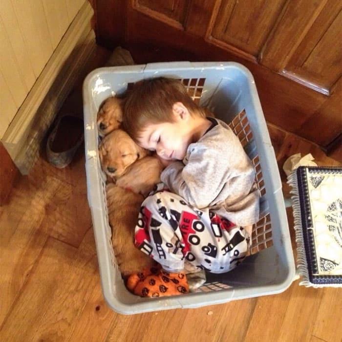 Малыш спит с собакой