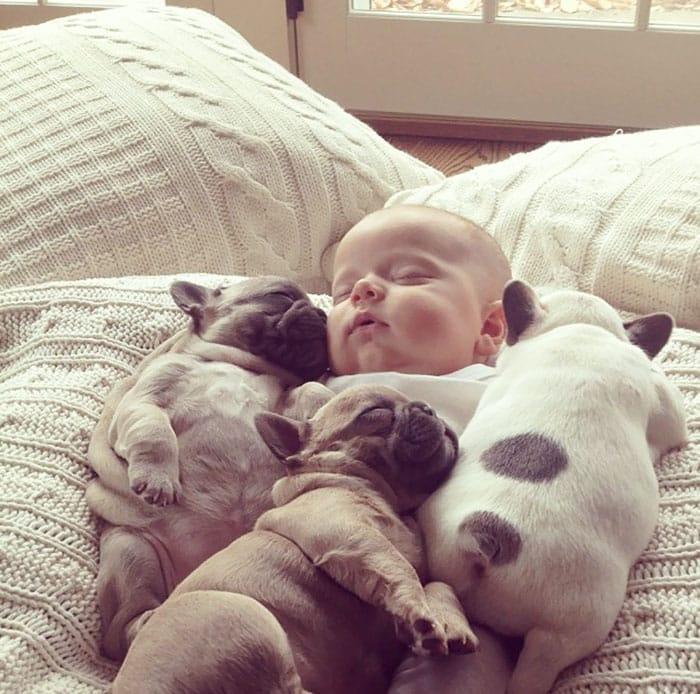 Младенец с щенками