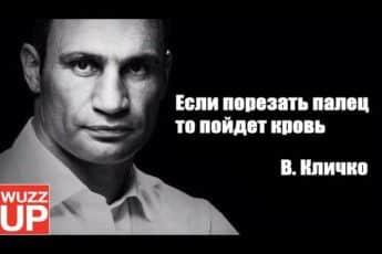 Мудрость Кличко