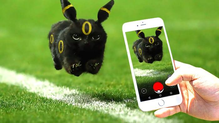 Черная кошка на телефоне
