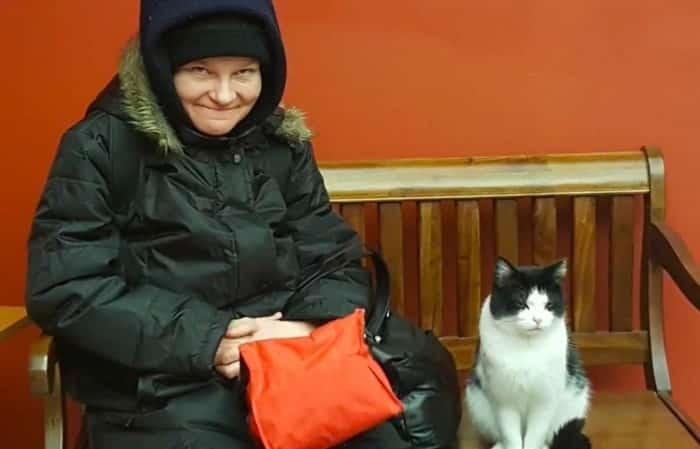 История одной кошки от которой веет теплом