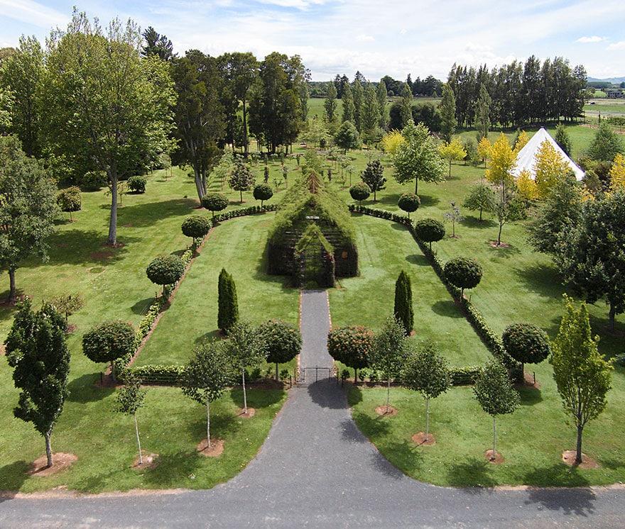 Уникальная церковь выращена в Новой Зеландии