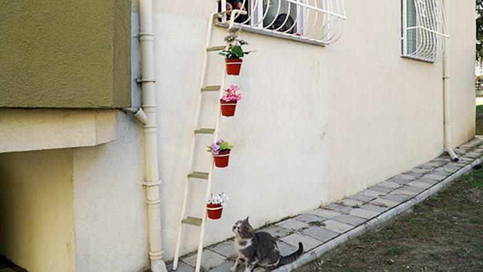Лестница к теплу