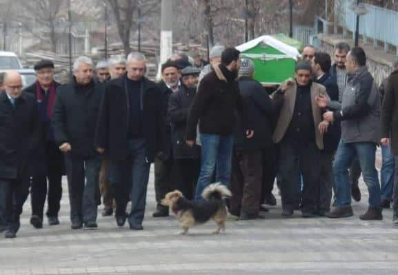 Собака на похоронах