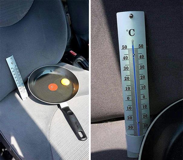 Яичница в машине