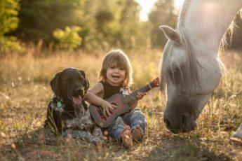 Отношение между детьми и животными