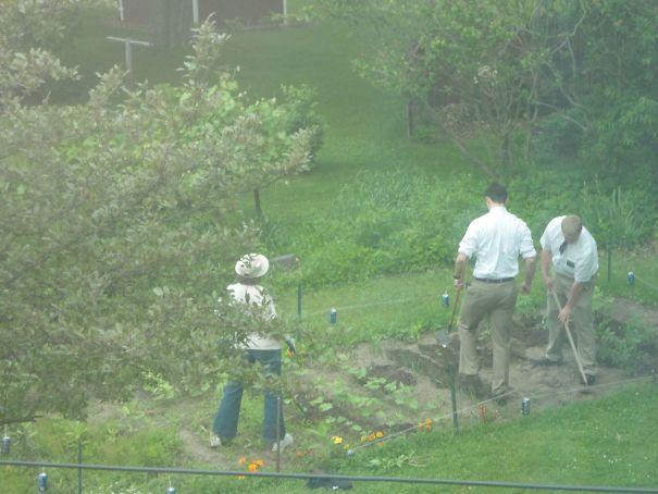 Мама заставила мормонов работать в саду
