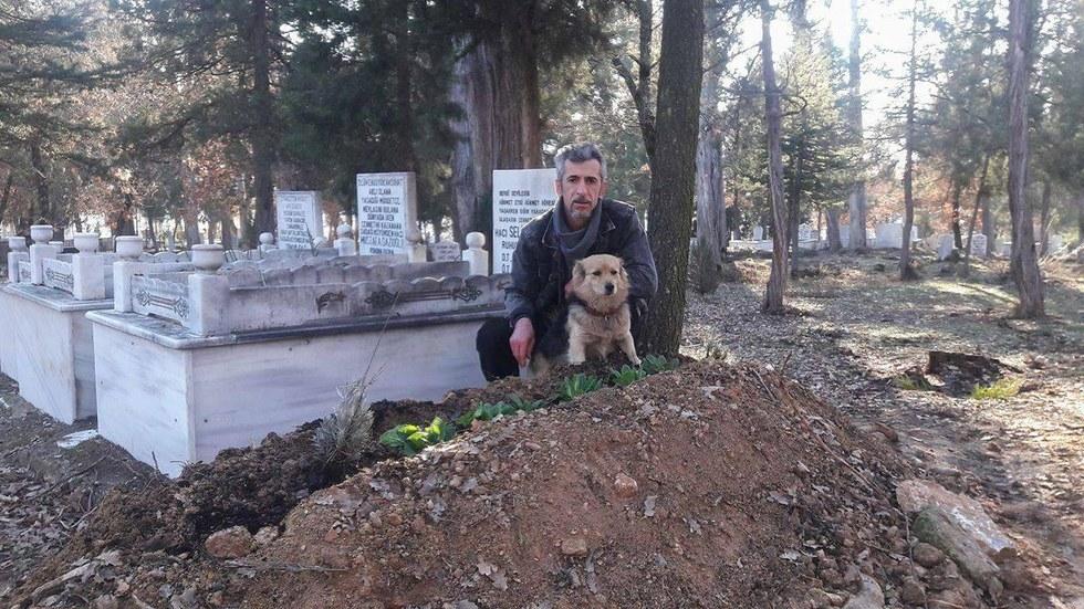 Собака на могиле своего хозяина