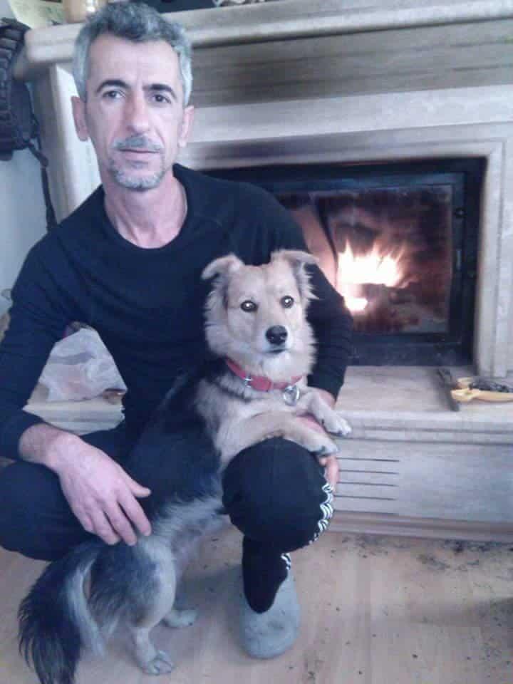 Новый хозяин для собаки