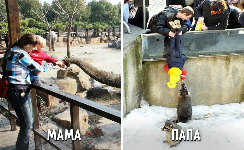 Сходили с сыном в зоопарк