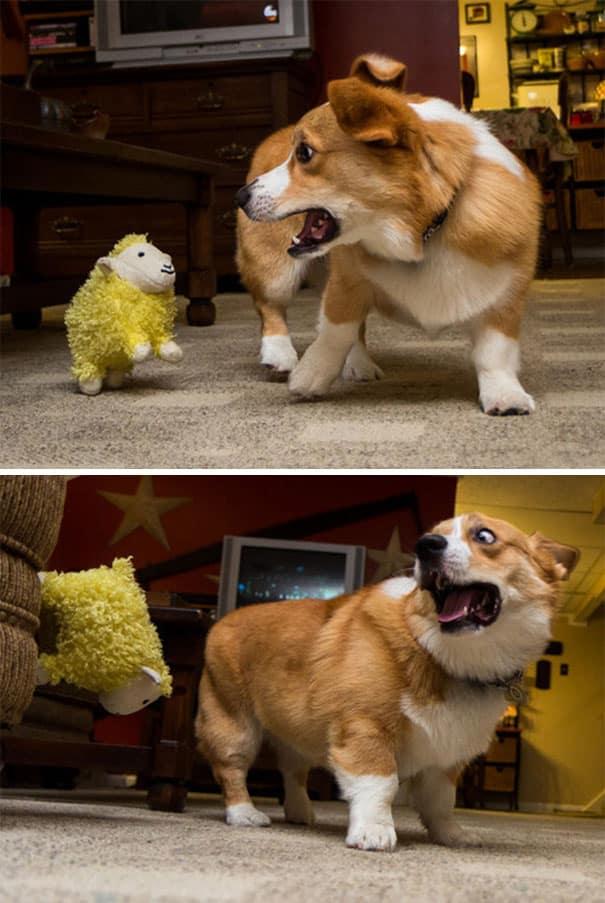 Ужасная игрушка